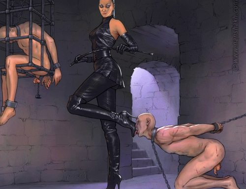 barronis:  ciod:  Femdom Cartoon Image of the Day   barronis