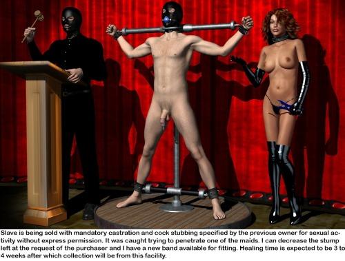 Master bdsm gallery male slave — photo 3