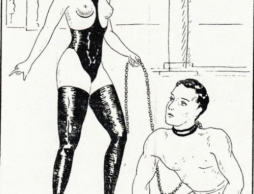 Dommes Shame & Humiliate Puppyboys