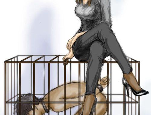 bestfemdomart:cages sissy slave training femdom art