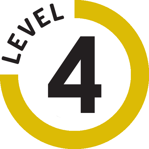 Femdom Level 4