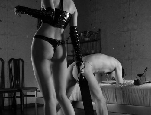tru2bkind:I find my thoughts here.  Over and over until I know…