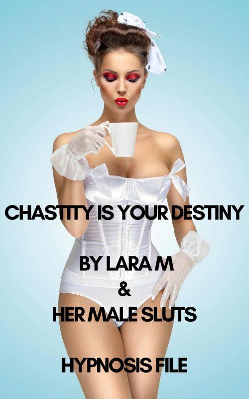 chastityisyourdestiny