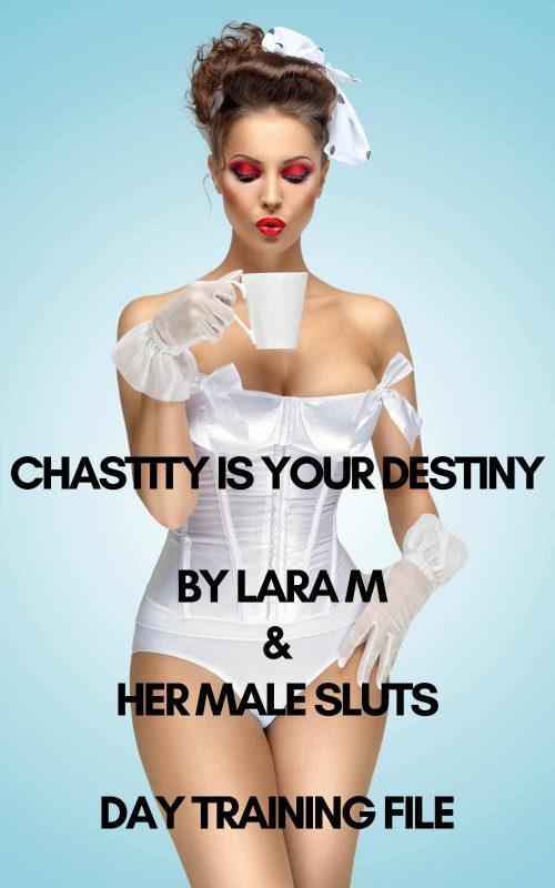chastityisyourdestinydaytraining